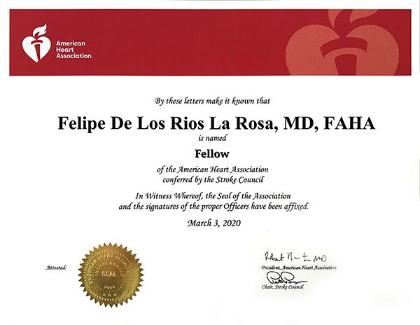 Fellow of the American Heart Association (FAHA)